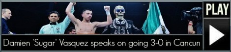 Pro fights 324 (4)