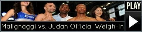 judah-malignaggi (2)