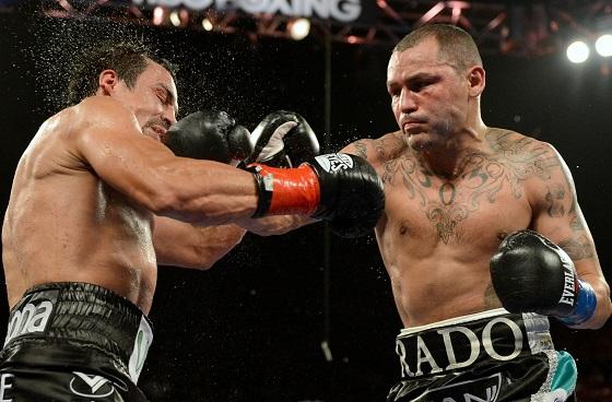 15knockdown punch (2)