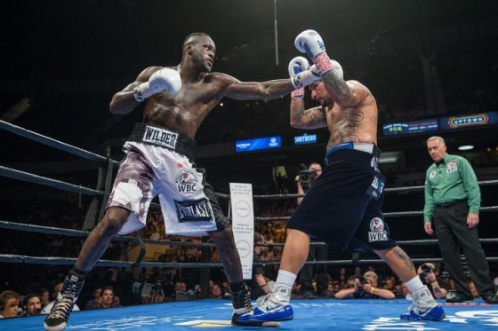 wilder-arreola-fight (18)