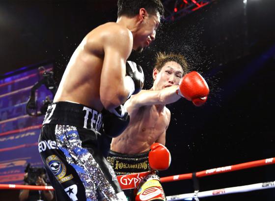 Teofimo_Lopez_vs_Masayoshi_Nakatani_action8